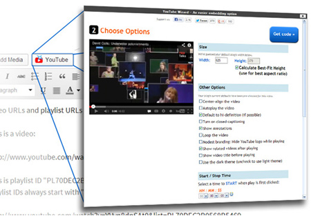 YouTube WordPress Embed Plugin to customize a video, playlist